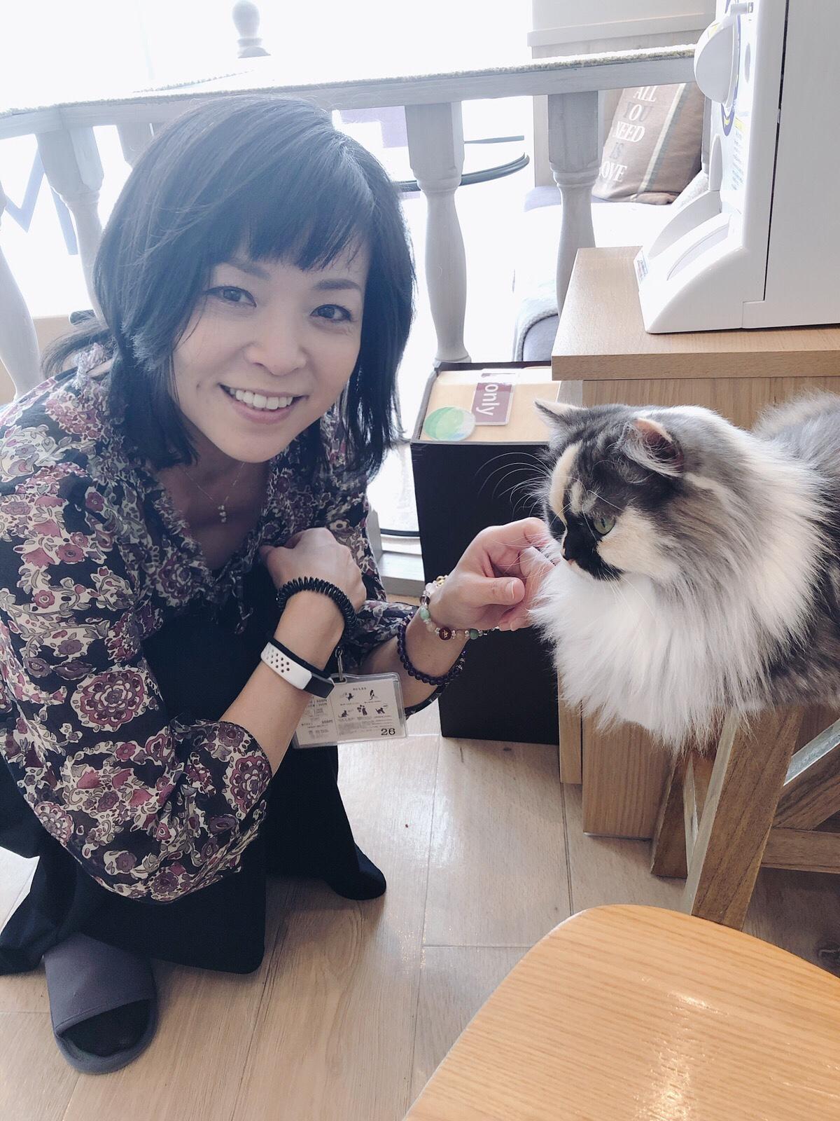 お初!猫カフェ