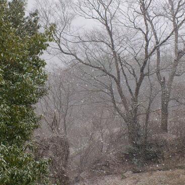 長野・大町は雪