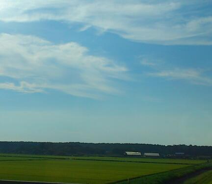 村上市の空